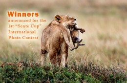 "Winners announced for the 1st ""Sente Cup"" International Photo Contest"
