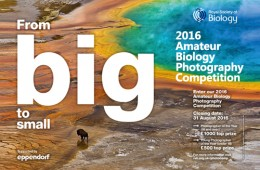 Amateur Biology Photography Competition