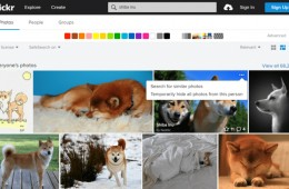 Flickr introduces visually similar search