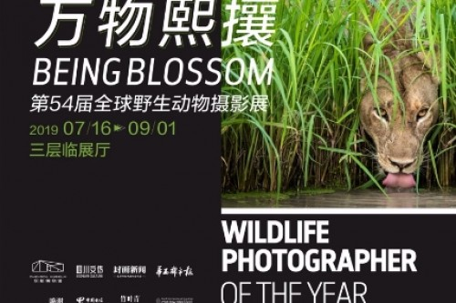 Int'l wildlife photo show held in Sichuan