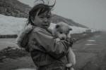 Pictures Full of Life in Greenland[1]