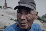 Pictures Full of Life in Greenland[12]